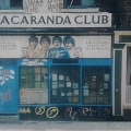 07 The Jacaranda